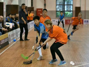 Floorball Centre Pro - Floorball